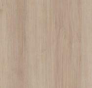 Firenze Maple