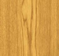 Bologna Oak