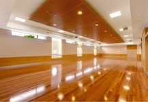 Laminated Ceiling Panels